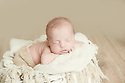 Vincent G Baby Bee Newborn Session