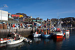 Boats in the fishing harbour in sisimiut, the second largest town in Greenland. It is the  northernmost year-round ice-free port in Greenland