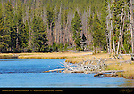 Firehole River, Middle Geyser Basin, Yellowstone National Park, Wyoming