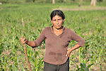 A woman stands in her corn field in Las Flores, Ixcan, Guatemala.