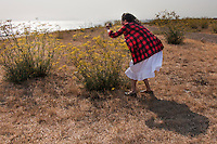 A first-time visitor to the San Leandro Marina Park takes time to compose an image of the San Francisco Bay that includes a foreground of yellow flowers, sweet fennel.