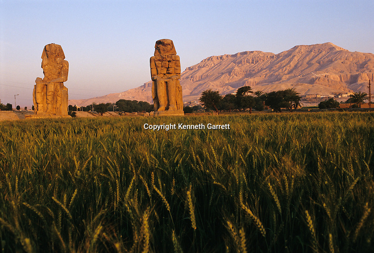 Colossi of Memnon; Amenhotep III; Tutankhamun and the Golden Age of the Pharaohs, Page 117