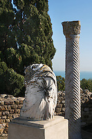 Low angle view of the remains of a sculpture and a Punic column outside the Villa of the Aviary, Carthage, Tunisia, pictured on January 29, 2008, in the afternoon. Carthage was founded in 814 BC by the Phoenicians who fought three Punic Wars against the Romans over this immensely important Mediterranean harbour. The Romans finally conquered the city in 146 BC. Subsequently it was conquered by the Vandals and the Byzantine Empire. Today the site is a UNESCO World Heritage. The Roman Villa of the Aviary, with its octagonal garden set in a peristyle courtyard, is known for its fine mosaics depicting birds. Picture by Manuel Cohen.