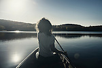 Young woman canoeing on a lake in fall. Muskoka, Ontario, Canada.