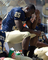 August 30, 2008: Pitt running back LeSean McCoy..The Bowling Green Falcons defeated the Pitt Panthers 27-17 on August 30, 2008 at Heinz Field, Pittsburgh, Pennsylvania.