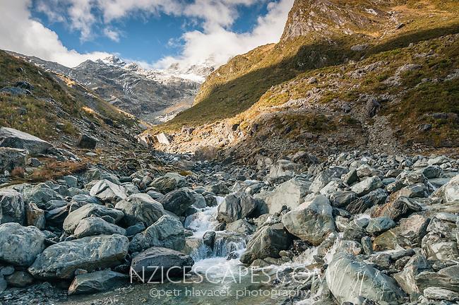 Unnamed creek near Ice Lake, Westland National Park, West Coast, New Zealand