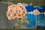 Jim Franklin's mural of armadillos and ears sprouting as flowers from the Armadillo World Headquarters, Austin Texas, September 19, 2009. The Armadillo World Headquarters was an iconic Austin music venue during the 1970s. This mural was removed from the building before demolition and was stored in a garage in Bastrop Texas before being returned to the artist, Jim Franklin.