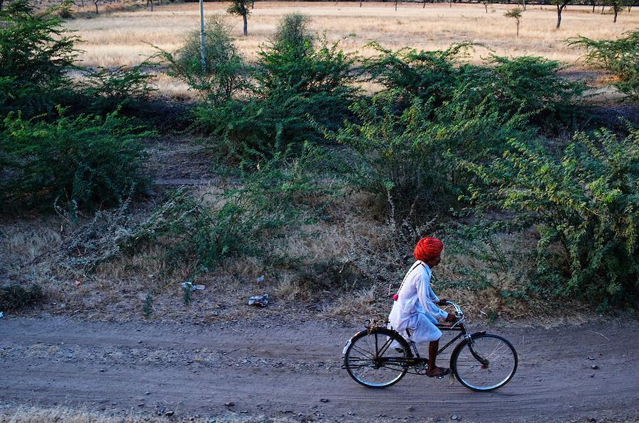 A Rajasthani man commuting on his Bicycle, Rajasthan.