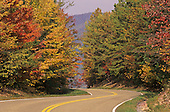 A roadway through autumn colors, Great Smoky Mountains National Park, Tennessee, USA.