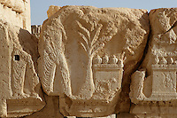 Carved relief depicting figures, tree, altars, sheep, fruit, peristyle courtyard, sanctuary of Bel Marduk, chief Mesopotamian deity, built 3rd century BC - 1st century AD, Palmyra, Syria, detail Picture by Manuel Cohen