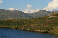 Stortjennin p&aring; H&oslash;gfjellet, Skarvene og Roltdalen nasjonalpark. Skarvene med Storskarven (Tjohkele) i bakgrunnen. Foto: Bente Haarstad Skarvan.