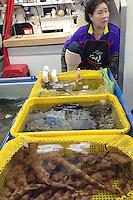 Korea Fish Market