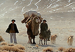 Herders en route to wintering grounds, Pamir, China