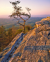 Cheaha Mountain, Cheaha Mountain State Park, Cheaha Wilderness, Talladega National Forest, Alabama
