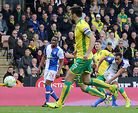 Blackburn Rovers' Elliott Bennett gets a shot away<br /> <br /> Photographer David Shipman/CameraSport<br /> <br /> The EFL Sky Bet Championship - Norwich City v Blackburn Rovers - Saturday 11th March 2017 - Carrow Road - Norwich<br /> <br /> World Copyright &copy; 2017 CameraSport. All rights reserved. 43 Linden Ave. Countesthorpe. Leicester. England. LE8 5PG - Tel: +44 (0) 116 277 4147 - admin@camerasport.com - www.camerasport.com