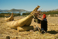 Aymara Indian fisherman making reed raft called  balsa de totora, on Suriqui Island, Lake Titicaca, Bolivia