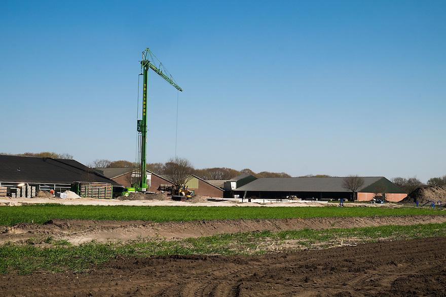 Nederland, Landhorst, 20 april 2015<br /> Boerenbedrijven, boerderijen, grote stallen voor koeien of varkens<br /> Foto: Michiel Wijnbergh