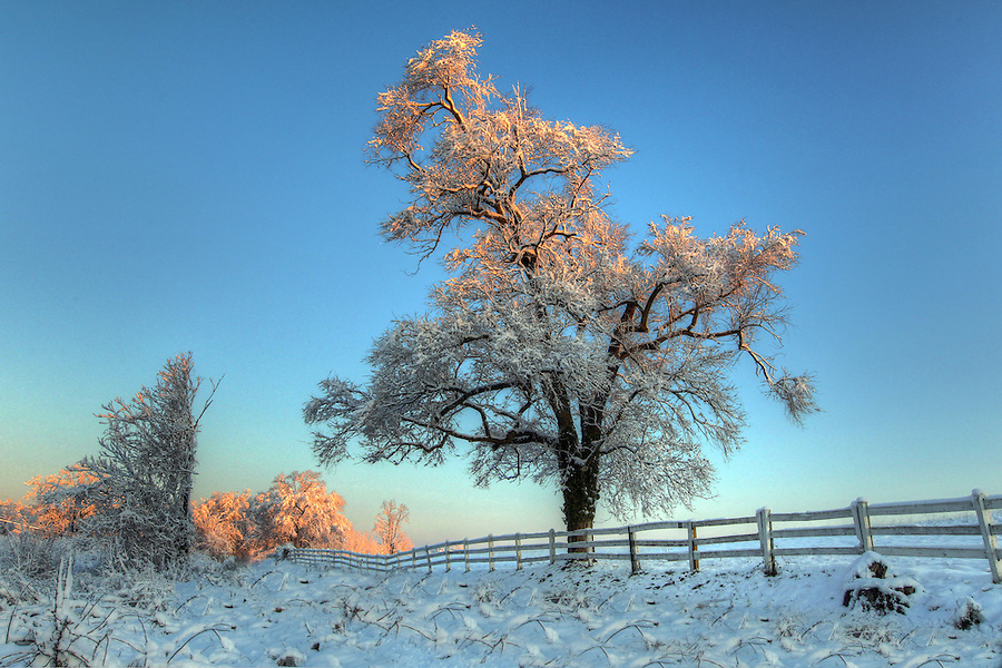 Snow covered landscape in VA. Photo/Andrew Shurtleff