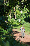 Taveuni, Fiji; an older, local man with several freshly dug taro roots over this shoulder, walking down the dirt road