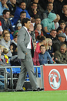 Wales manager Chris Coleman shouts some instructions to his players during the Wales v Serbia FIFA World Cup 2014 Qualifier match at Cardiff City Stadium, Cardiff, Wales -Tuesday 10th Sept 2014. All images are the copyright of Jeff Thomas Photography-07837 386244-www.jaypics.photoshelter.com