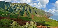NaPali Panorama
