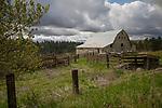 Washington, Eastern, Steptoe, Palouse Region. An old gray barn under cloudy skies in spring.