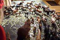 Sybil a Dumbo-eared rat is circled by the herd of curious Schleich model horses