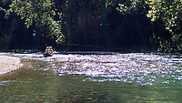 NWA Democrat-Gazette/FLIP PUTTHOFF<br /> Graham and Ross float and fish Big Sugar Creek near Pineville, Mo., on August 20 2015.