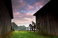 Two horses stand at a fence next to a barn at sunrise on a farm in North Carolina.