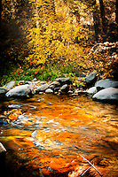 Oak Creek Canyon ©Rick D'Elia November 4, 2012