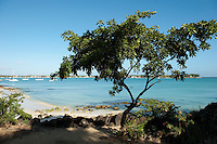 Mauritius. Beach on Grand Bay.
