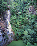 Volcanic Crater, Mount Hypipamee National Park, Queensland