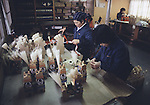 Workers trim tail and mane at the Hachinohe Toy Wooden Horse Factory in Hachinohe, Japan. The Hachinohe horse or Yawata Uma is made in a small factory, where, for eight hours a day, six days a week, 11 workers cuts, chisel, sand, paint and shellac wooded horses of all sizes ranging from just over an inch to nearly a foot high. (Jim Bryant Photo).....