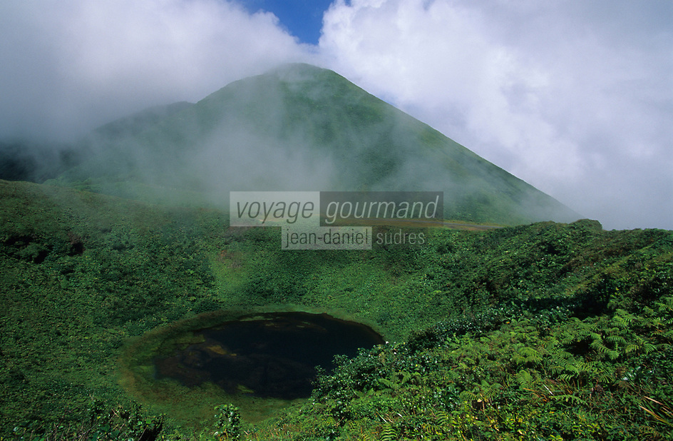 Europe/France/DOM/Antilles/Petites Antilles/Guadeloupe/Env de Saint-Vincent : La Soufrière culminant à plus de 1300 m d'altitude (volcan actif)