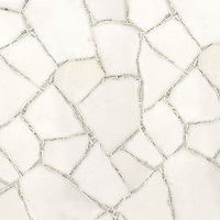 Name: Path<br />