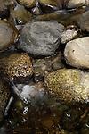 Mini waterfall on the rocks