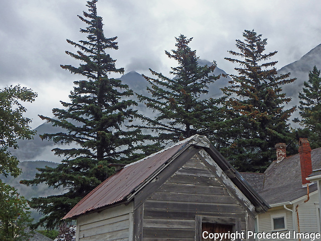 pine trees peek over the roof tops and clouds encircle mountains on a rainy day in Skagway, Alaska