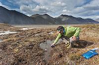 Collecting water. Arctic National Wildlife Refuge, Brooks Range, Arctic Alaska.