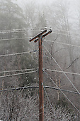 ice covered electricity wires from freezing rain