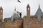 Foto: VidiPhoto<br /> <br /> DOORNENBURG - Personeel van leidekkersbedrijf Van Wely uit Groessen, werkt vrijdag aan de laatste wachttoren van de voorburcht van kasteel Doornenburg. Het vijfde en laatste torentje is nu vrijwel helemaal voorzien van nieuwe kwaliteitsleien, die naar verwachting weer ruim 50 jaar mee kunnen.De laatste keer dat de wachttorens van nieuwe leien zijn voorzien was kort na de oorlog. Leidekkersbedrijven krijgen het steeds moeilijker door de sloop van veel kerken met leien daken. Het leidekkerswerk is onderdeel van een herstelproject voor kasteel Doornenburg, dat dit jaar voornamelijk gericht is op de restauratie van de daken op de voorburcht. Dat kost ruim 70.000 euro. Een deel daarvan wordt betaald door de gemeente Lingewaard. Kasteel Doornenburg, bekend van de avonturenserie over Floris, is een rijksmonument en het enige kasteel in Nederland met een nog werkzame boerderij op de voorburcht. Eind volgende week moeten de werkzaamheden klaar zijn.