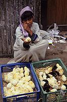 Afrique/Egypte/Le Caire: Petite marchande de poussins dans les souks de la rue des Mosquées
