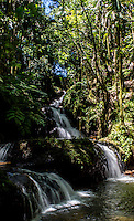 Onomea Waterfalls at the Hawai'i Tropical Botanical Garden, Onomea, Big Island of Hawai'i.