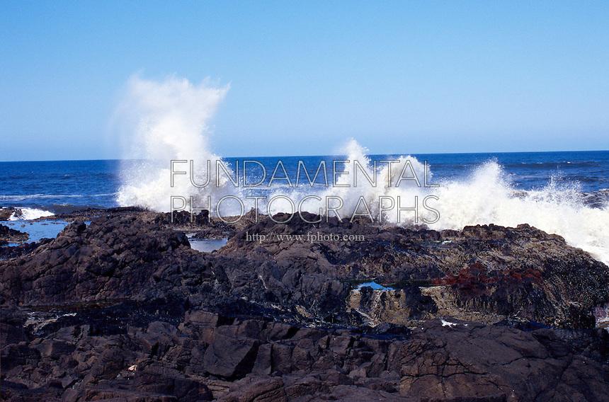 SEACOAST<br /> Crashing Surf and Tidal pools<br /> Oregon coast