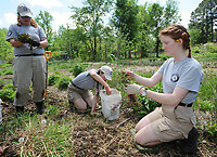 NWA Democrat-Gazette/ANDY SHUPE<br /> Mallory Schmackpfeffer, (from right), of Rochester, N.Y., works Tuesday, April 18, 2017, alongside Cara Felts of Baltimore and Brandy Stone of Fredericksburg, Va., as they and other AmeriCorps volunteers remove weeds from the garden at Tri-Cycle Farms in Fayetteville. Eight members of the organization's National Civilian Community Corps are in town through mid-July to work at Tri-Cycle Farms and in the area to help redesign the gardens and plant trees.