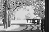 Road at Keeneland in Lexington, KY.  Infrared (IR) photograph by fine art photographer Michael Kloth.
