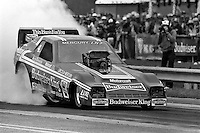 GAINESVILLE, FL - MARCH 13: Kenny Bernstein drives his Mercury LN7 Funny Car during the NHRA drag race at Gainesville Raceway near Gainesville, Florida, on March 13, 1983.