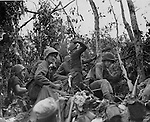 "Marines use rifle grenades, hand grenades and Molotov Cocktais to battle the Japanese entrenched in caves on ""Suicide Ridge"" on Peleliu Island. The battle lasted nine days before reinforcements arrived. The Marine in the middle is throwing one of the cocktails, ignited by the flame behind him."