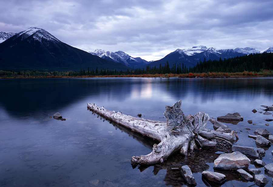Rocks and a grey log sit along the shoreline of the Vermillion Lakes near Banff National Park in Alberta, Canada.
