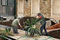 New Caledonia Glasshouse (formerly The Mexican Hothouse), 1830s, Charles Rohault de Fleury, Jardin des Plantes, Museum National d'Histoire Naturelle, Paris, France.  Low angle view of gardeners replanting the glasshouse. They have filled the new beds with earth and are now putting in the plants. Here two gardeners are about to move a plant from a wheelbarrow into the soil by the central walkway. The New Caledonia Glasshouse, or Hothouse, was the first French glass and iron building.