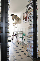 A stuffed zebra on the wall of the entrance hall is framed by two columns of books